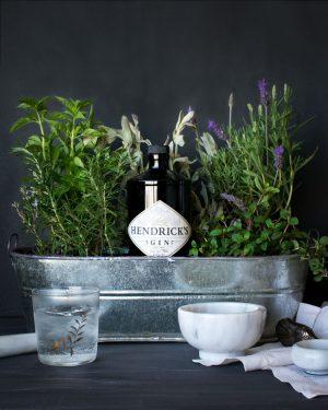 gin hendrick's con plantas aromáticas