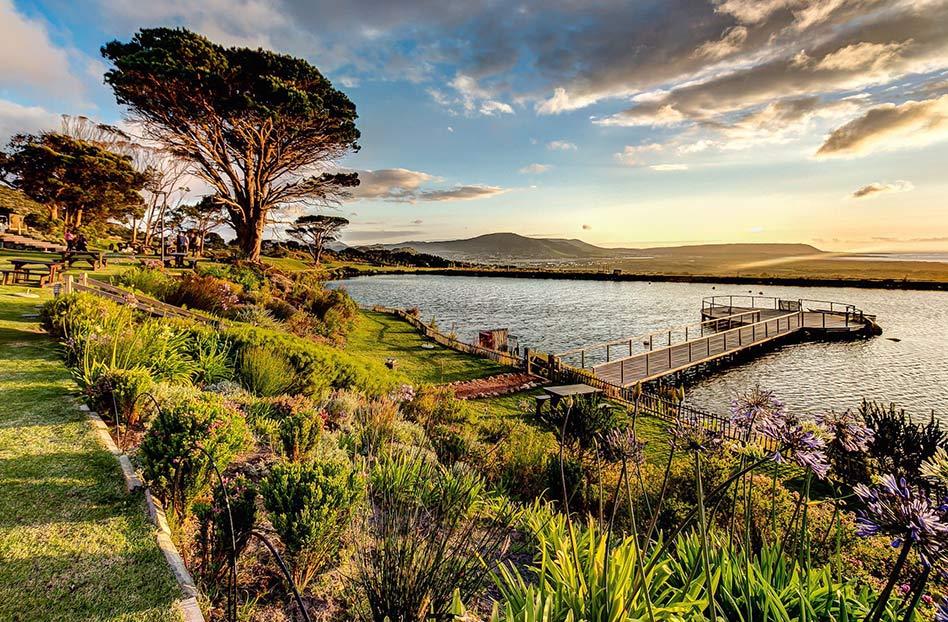 viñedos cerca del mar, sudáfrica