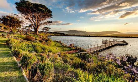 Playa y vino: 5 destinos con viñedos cerca del mar