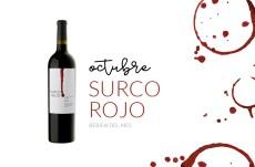 Surco Rojo, bebida de octubre en Maria Orsini