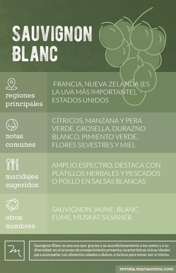 Sauvignon Blanc, conoce esta uva en revista Maria Orsini