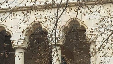 Photo of Simfonia speranței și credinței! Clopotele bisericilor din Argeș de Buna Vestire