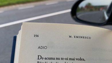 Photo of Ce înseamnă  cuvântul ADIO