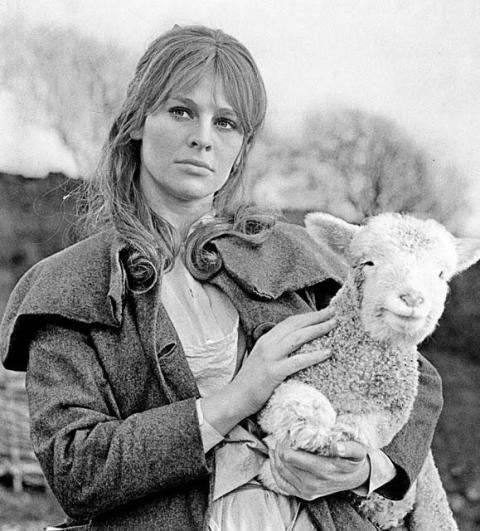 Julie Christie, 1967