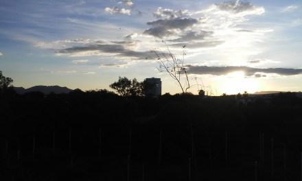 Oasis en medio del desierto, Aguascalientes