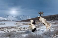 reindeerriders14