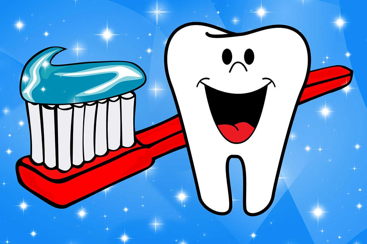 Aparatul dentar