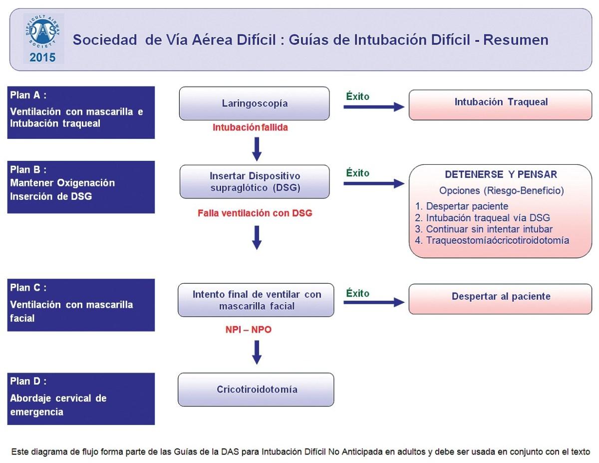El Aporte de las Nuevas Guías de la Sociedad de Vía Aérea Difícil (DAS)