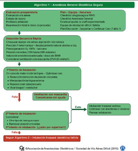 Cirugía prenatal del mielomeningocele: Un nuevo desafío