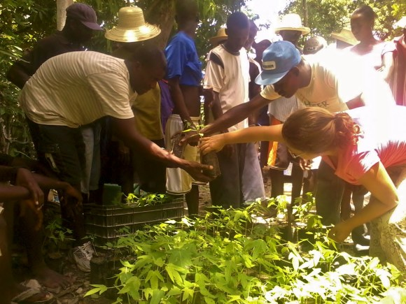 Via Campesina Internacional organiza apoio aos camponeses haitianos. Foto: Acervo Livia Bezerra/Brigada Dessalines,MST