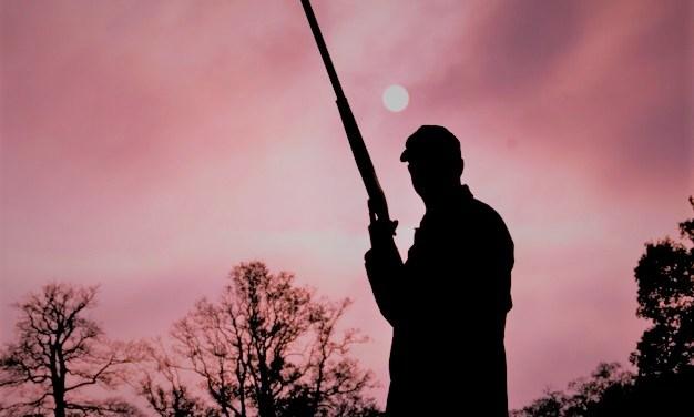 El tempus fugit en la novela «Los disparos del cazador» de Rafael Chirbes: del presente al pasado y viceversa