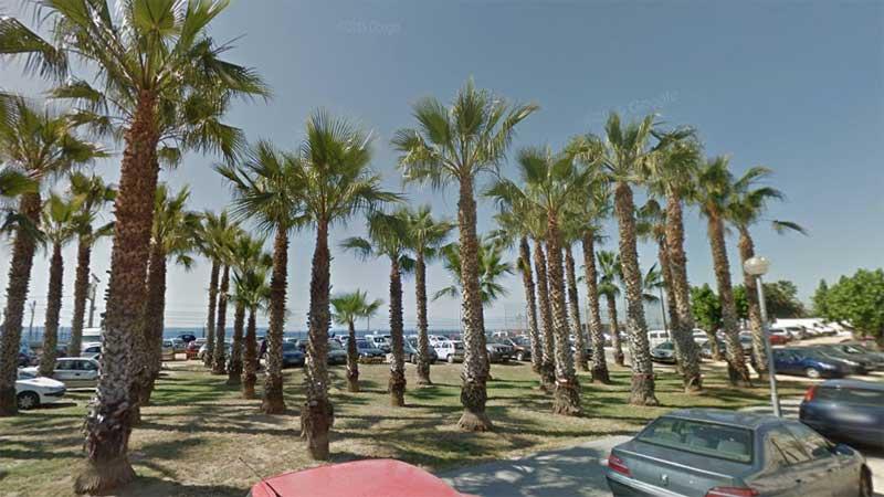 Varias plazas son para ocuparse de la jardineria municipal