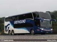 Greyhound da África do Sul adquire novos ônibus New G7 Volvo