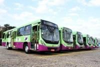 SP: Prefeitura de Louveiras muda sistema de bilhetagem eletrônica