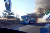 Ônibus da Viação Novo Horizonte pega fogo na MG-122