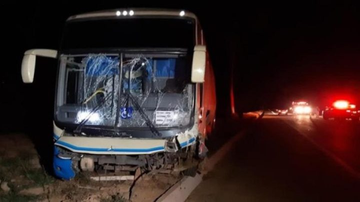 Acidente com ônibus da Novo Horizonte deixa um morto em Minas Gerais