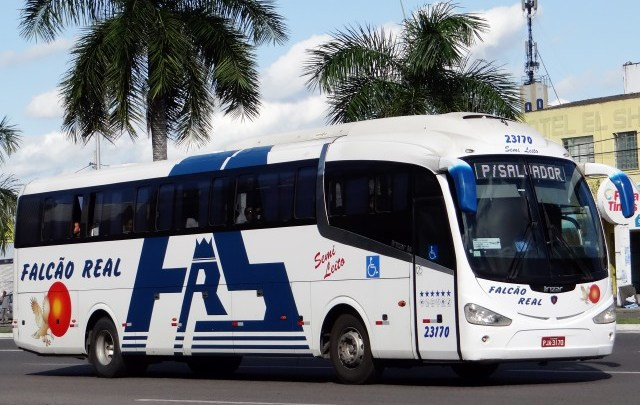 Agerba anuncia licitação de linhas intermunicipais da Falcão Real e São Luiz para o dia 16