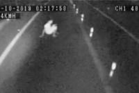 SP: Homem deita no meia da rodovia e quase é atropelado por ônibus