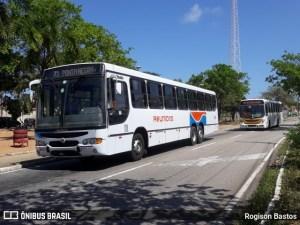 Tribunal de Justiça veta lei que permitiria wi-fi nos ônibus de Natal