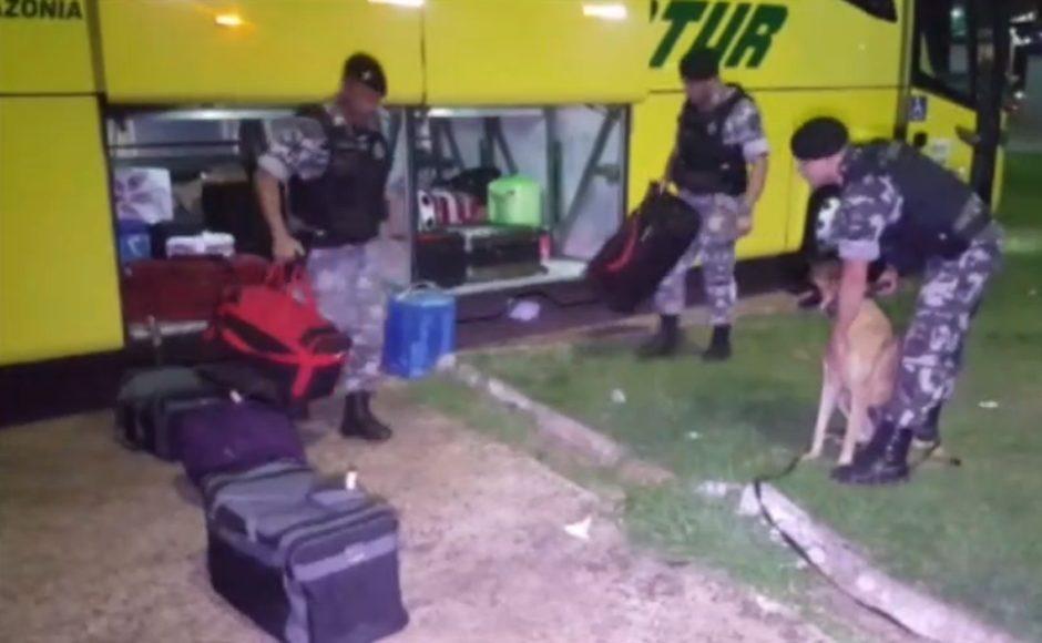 PR: Polícia apreende drogas em bagageiro de ônibus na Rodoviária de Cascavel