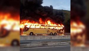 RJ: Ônibus da Viação Itapemirim pega fogo na BR-101 em Silva Jardim