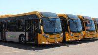 TCB renova parte de sua frota com modernos novos ônibus