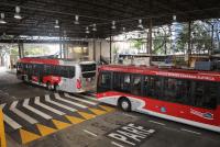 São Paulo: Trólebus da linha 342M/10 Term. São Mateus - Term. Penha serão substituídos por veículos a diesel no domingo