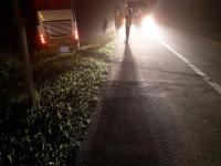 Ônibus da Catarinense sai na pista com 29 passageiros a bordo na BR-277
