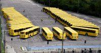 SP: Jundiaí renova parte da frota com 30 novos ônibus