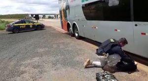 MT: PRF prende passageiro transportando cocaína em ônibus da Eucatur na BR-163