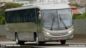 Viação Nossa Senhora do Amparo vende mais quatro  ônibus Audace