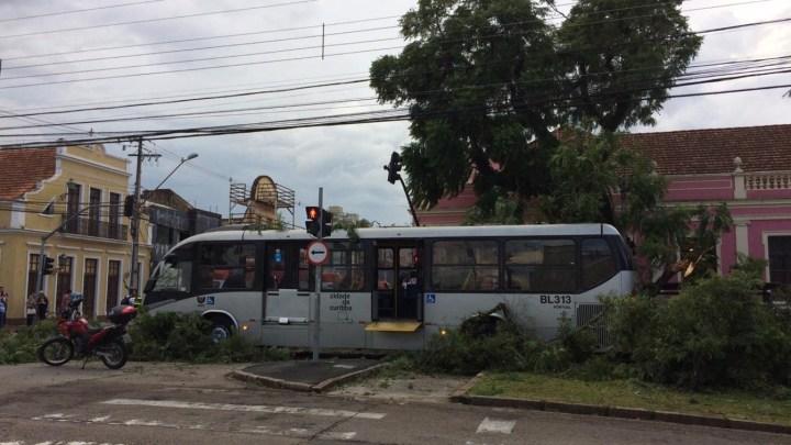 Árvore cai em cima de ônibus e dois carros, deixando cinco pessoas feridas em Curitiba
