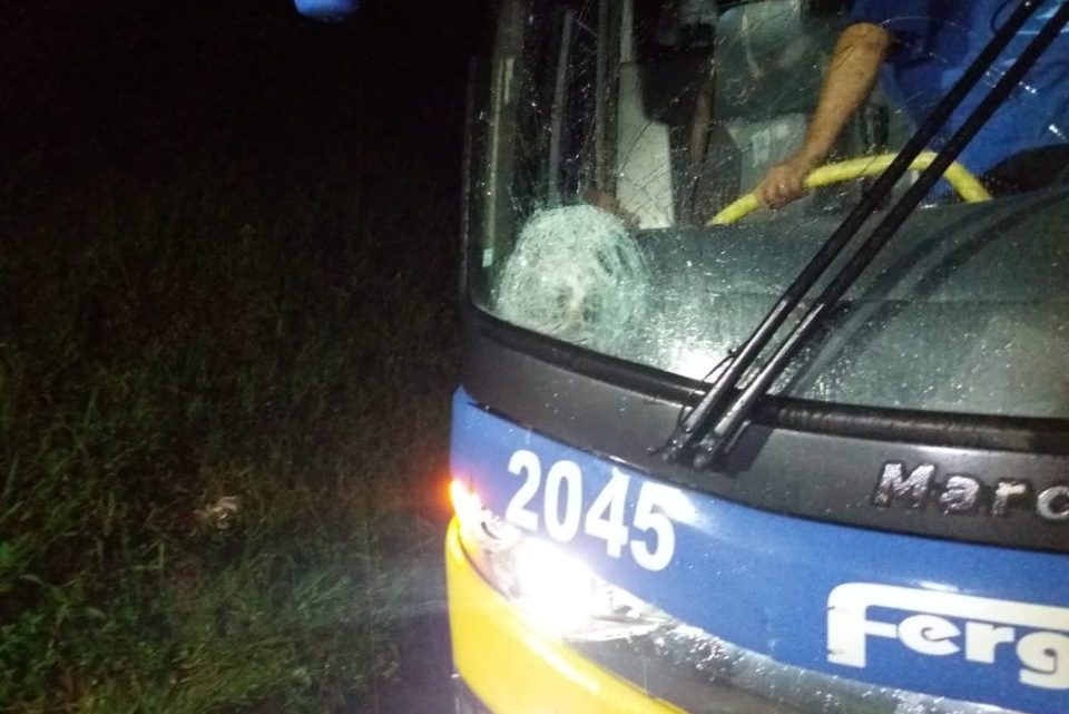 Idoso morre atropelado por ônibus na BR-116 na Região Metropolitana de Curitiba