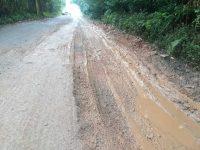 Petrópolis segue com várias linhas de ônibus sem circular, devido ao péssimo estado das estradas