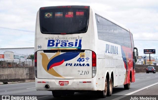 PI: Ônibus ex-Pluma a serviço da TransBrasil é proibido de entrar no município de Uruçuí