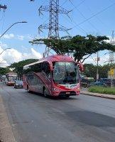 Movimento SOS Turismo faz carreata com diversos ônibus na Fernão Dias na Região Metropolitana de BH