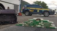 BA: PRF prende casal transportando entorpecentes em ônibus de turismo na BR-116