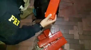 RS: PRF prende traficante com maconha e crack dentro de ônibus na BR-290