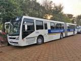 PR: Prefeitura de Ivaiporã vai testar ônibus articulado no transporte público gratuito