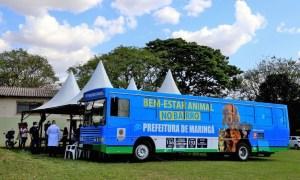 Maringá: Ônibus do Bem-Estar Animal atende o bairro Cidade Alta