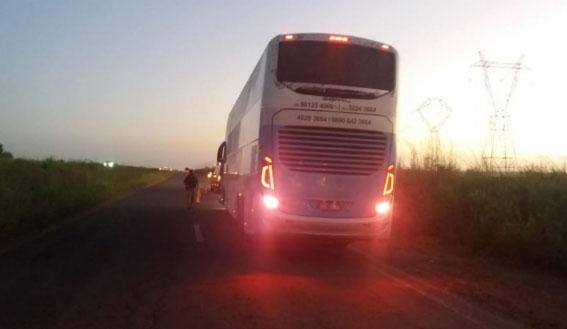 MA: Ônibus da Real Maia atropela búfalo e motorista fica preso nas ferragens na BR-135