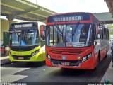 São Luís: Ônibus deixam de circular neste domingo, após motorista ser morto durante assalto