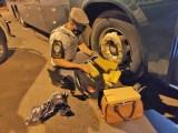 SP: Polícia Rodoviária apreende entorpecentes em ônibus que seguia para em Presidente Prudente