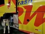Vídeo: PRF resgata 14 filhotes em situação de maus tratos sendo transportados em ônibus da TransBrasil