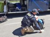 SP: PRF apreende mercadorias contrabandeadas em ônibus na BR-116