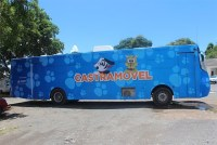 Salvador: Ônibus do Castramóvel retorna e faz atendimentos em Itapuã