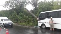 Manaus: Micro-ônibus derrapa e bate em poste de energia com passageiros a bordo