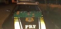 SP: PRF apreende entorpecentes em ônibus durante fiscalização na Via Dutra