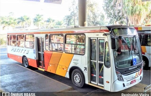 SP: Ônibus da Petitto seguem lotados, afirmam passageiros de Ribeirão Preto