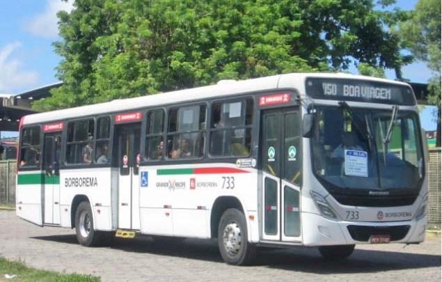 Vídeo: Ônibus do Grande Recife circulam lotados durante a pandemia da Covid-19